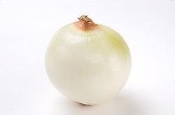 お取り寄せパスタソースナチュラルグレースメルカートのブログ 新玉ねぎと玉ねぎの違いって?