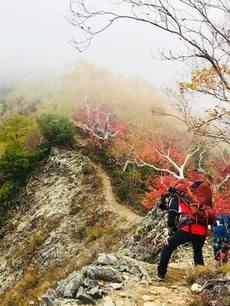 贈答・プレゼントにも。こだわり高級無添加 冷凍パスタソース専門店・おとりよせのナチュラルグレースメルカートのブログ 紅葉の涸沢登山に行ってきました!屏風岩のコル。