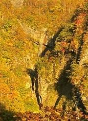 贈答・プレゼントにも。こだわり高級無添加パスタソース専門店・おとりよせのナチュラルグレースメルカートのブログ 妙高山は紅葉が綺麗でした!朝日に輝く滝と紅葉